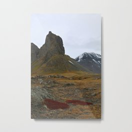 Red of the Fire Land Metal Print