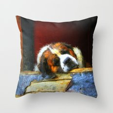 Old Timer II Throw Pillow