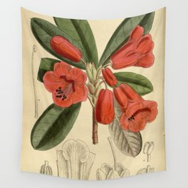 Rhododendron dichroanthum, Ericaceae Wall Tapestry