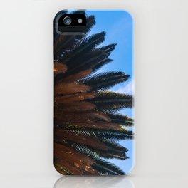 Summer Under a Palm iPhone Case