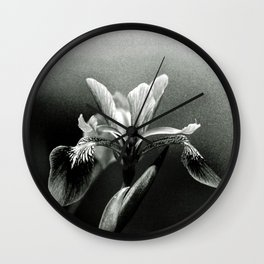 Beautiful Blue Flag Iris in black and white Wall Clock