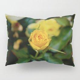 Intuitive Love Pillow Sham
