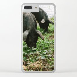 Pigs Snacking Clear iPhone Case