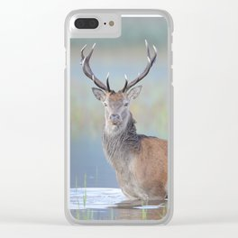 The morning bath Clear iPhone Case