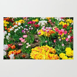 Tulips in Color Rug