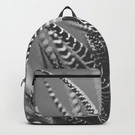 Zebra Haworthia (Stripes in Black and White) Backpack