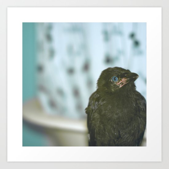 Bathroom Crow Art Print