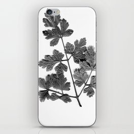 Parsley iPhone Skin