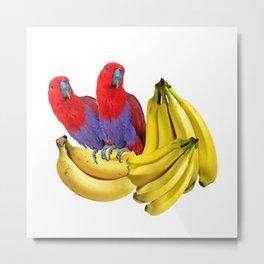 FANCY COLORED RED TROPICAL BIRDS & BANANAS Metal Print