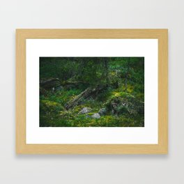Biome Framed Art Print