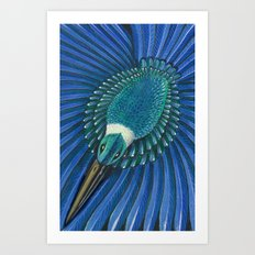New Zealand Sacred Kingfisher Art Print