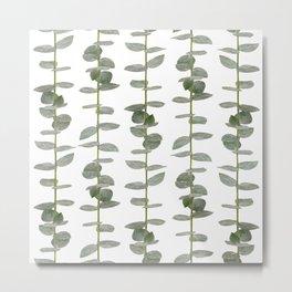 Eucalptus Branches - Naural Botanic Patterns Metal Print