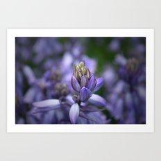 lilac Art Print