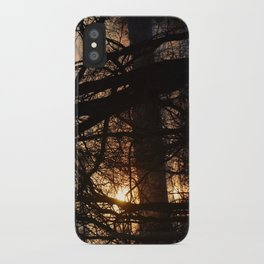 Winter Sun and River iPhone Case