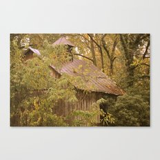 Shed in Woods Canvas Print
