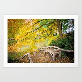 Autumn Bench Meadow Art Print