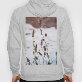 Plants in the snow Hoody