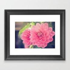 Pink Dahlia Framed Art Print