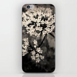 Valeriana sitchensis iPhone Skin