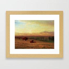 ALBERT BIERSTADT, BUFFALO ON THE PLAINS Framed Art Print