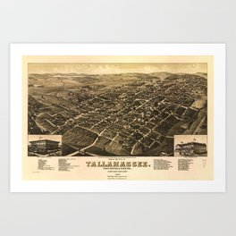 Aerial View of Tallahassee, Florida (1885) Art Print