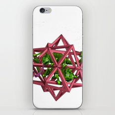 color me m.c. cubed! iPhone & iPod Skin