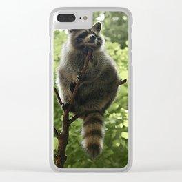 Kung Fu Raccoon Clear iPhone Case