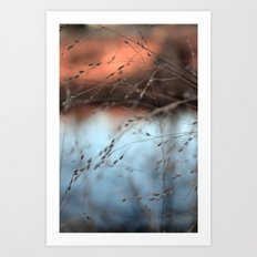 evening hush.  Art Print
