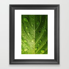 Think Green Framed Art Print