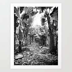 Banana Walk Art Print
