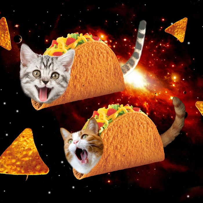 Taco Cats Space Comforters