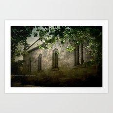 St Bernards Art Print