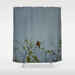 Great tit on a branch Shower Curtain