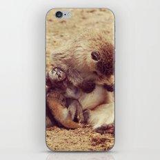 Baby Monkey iPhone & iPod Skin
