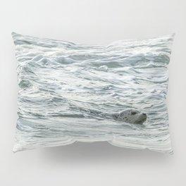Harbor Seal, No. 2 Pillow Sham