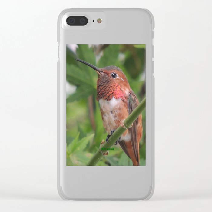 Hummingbird in the Japanese Maple Clear iPhone Case