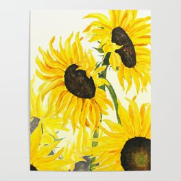 sunflower watercolor 2017 Poster