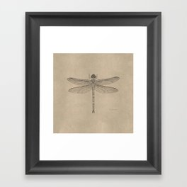 Dragonfly Fossil Dos Framed Art Print