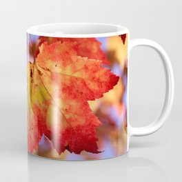 Autumn in Canada - Maple leafs Coffee Mug