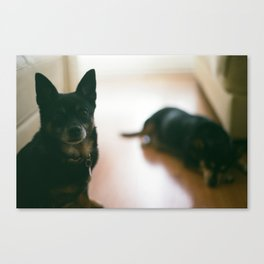 Lucie and Charlie Canvas Print