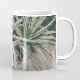Air Plant #1 Coffee Mug