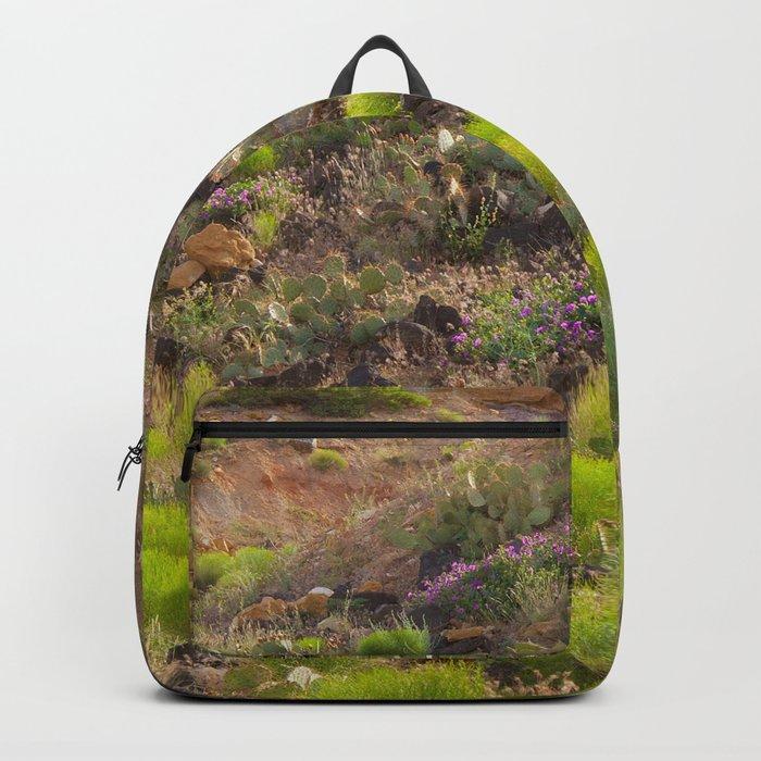 Painted Desert - 7 Backpack