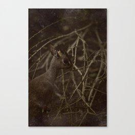 Caught in a strange World Canvas Print