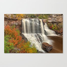 Blackwater Autumn Falls Canvas Print