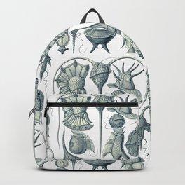 Ernst Haeckel Peridinea Plankton Backpack