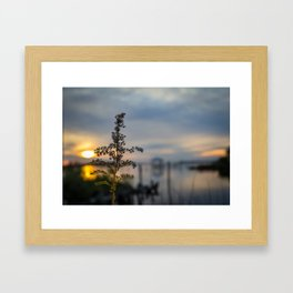 Simple Sunset Framed Art Print