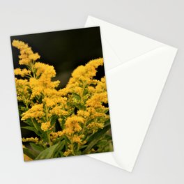 Golden Rod Stationery Cards