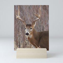 Beast Mode Mini Art Print