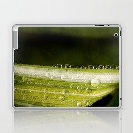 Garden Raindrops Laptop & iPad Skin
