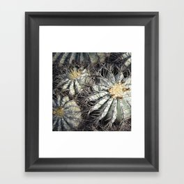 You Are Looking Sharp Framed Art Print